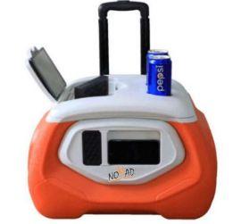 28L Stereo Music Cooler