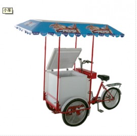 Three wheeled Solar Freezer Tricycle (Pedal Power) 208 Litres